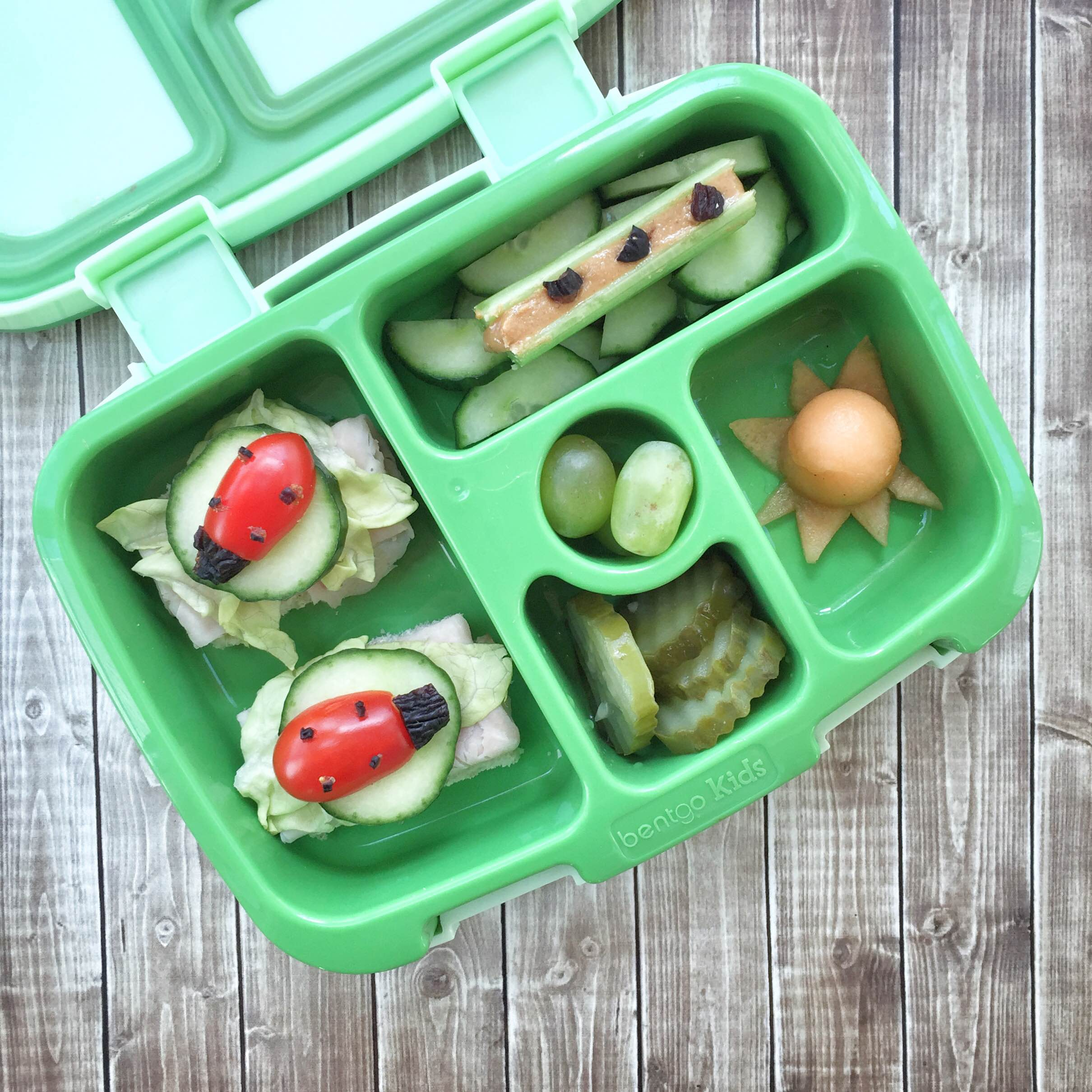 Earth day fun food ideas | Earth day lunchbox fun | Bento ideas for kids on Earth Day | Earth Day lunch | GinaKirk.com @ginaekirk