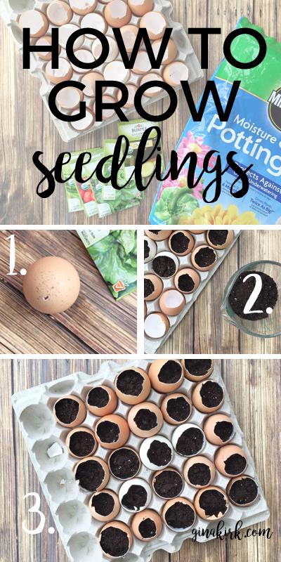 How to grow seedlings in eggshells | How to start seeds | Planting seeds | Eggshell seed starters | GinaKirk.com @ginaekirk